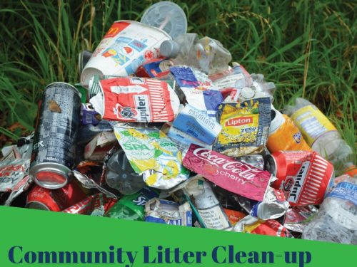 Community Litter Clean Up