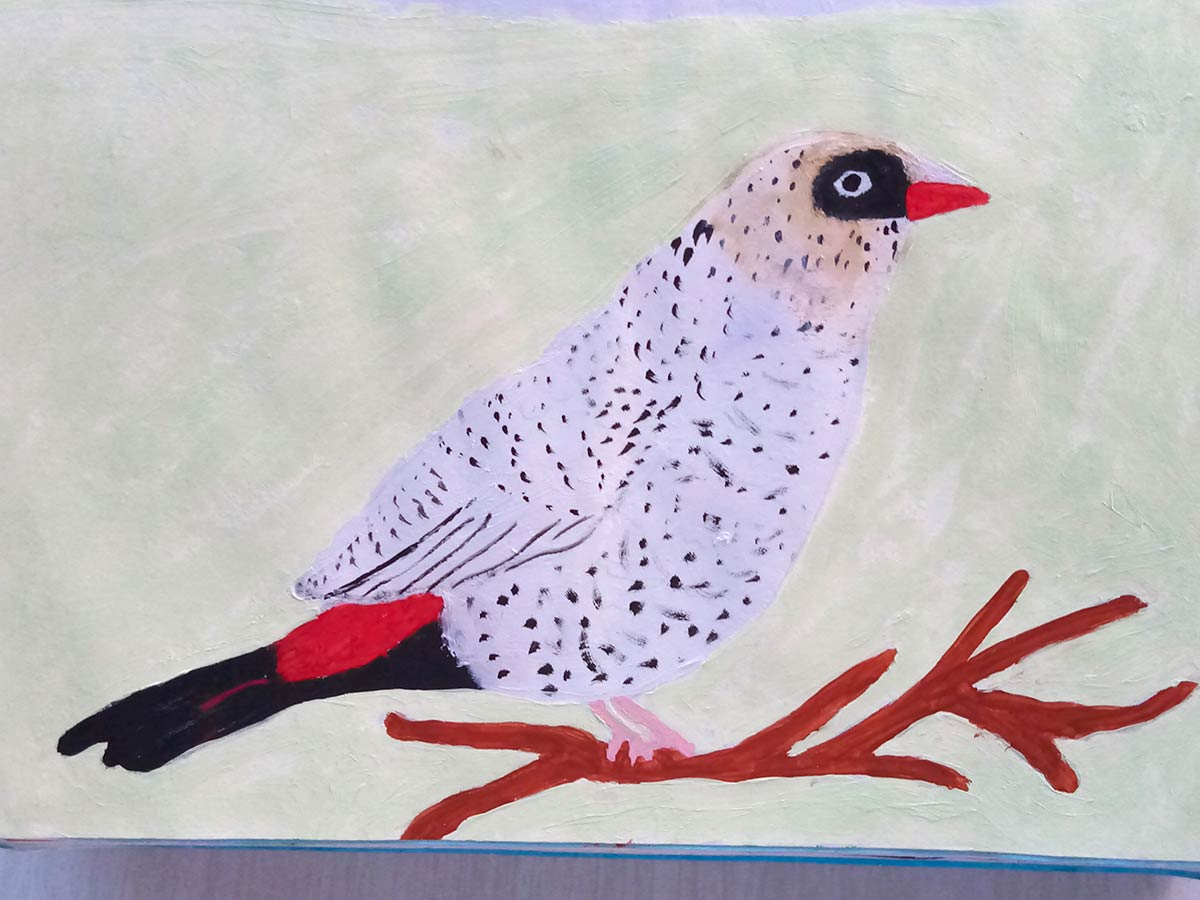Ann - Native bird Acyrlic paint