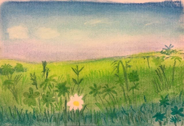 Kirsty L - Chamomile Flower study. Creative Welbeing Art Group - Recovery & Discovery Centre