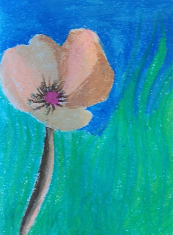 Varinia - Poppy. Creative Welbeing Art Group - Recovery & Discovery Centre